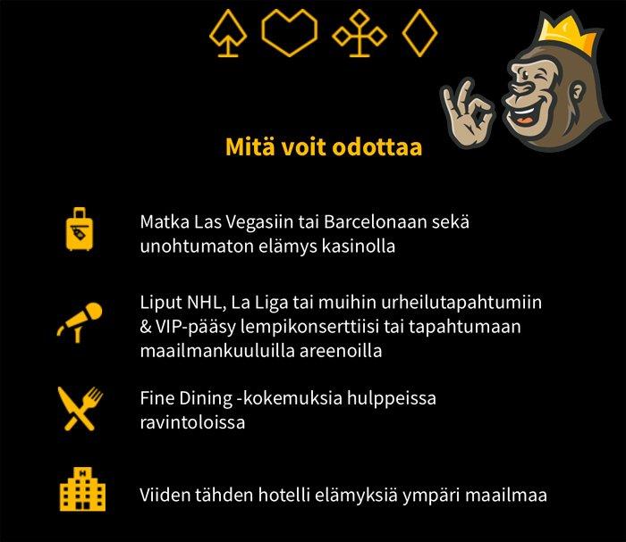 Karjala Kasinon kampanjoita ja Vip