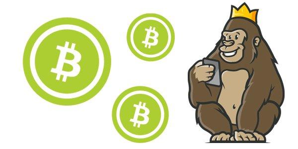 Näin pelaat bitcoineilla nettikasinolla